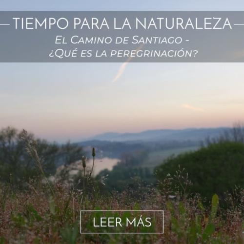 El Camino de Santiago - ¿Qué es la peregrinación?