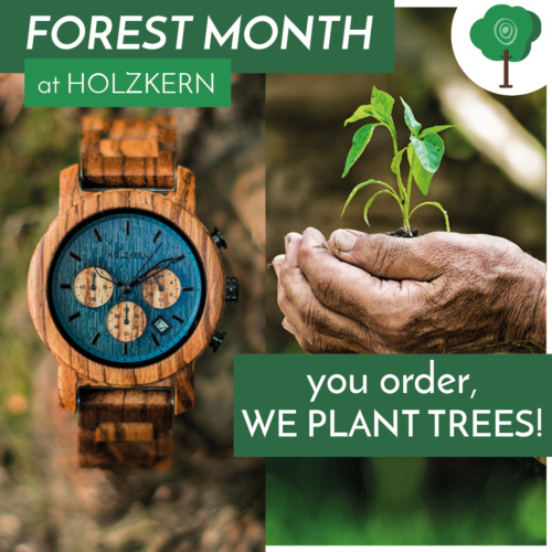 Forest Month at Holzkern - you order, we plant trees!