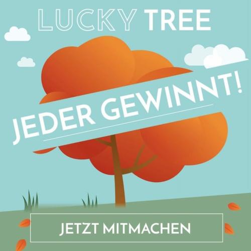 Holzkern Glücksbaum: Mitmachen & Gewinnen