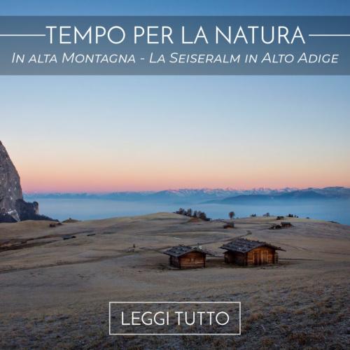 In alta Montagna - la Seiseralm in Alto Adige