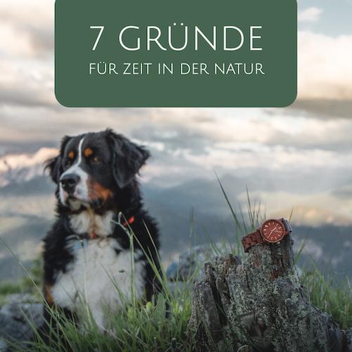 7 Gründe, warum du mehr Zeit in der Natur verbringen solltest