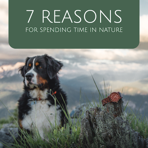 7 Reasons Why You Should Spend More Time in Nature