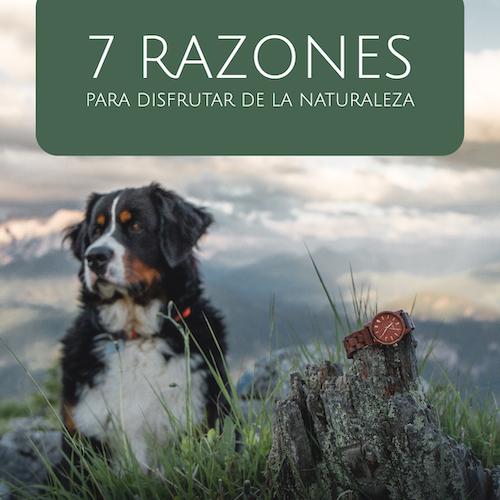 7 razones por las que deberías pasar más tiempo en la naturaleza