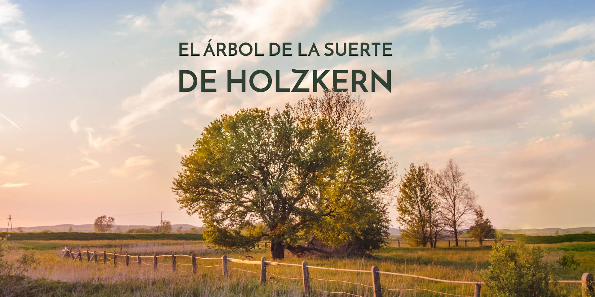 El Árbol de la Suerte de Holzkern