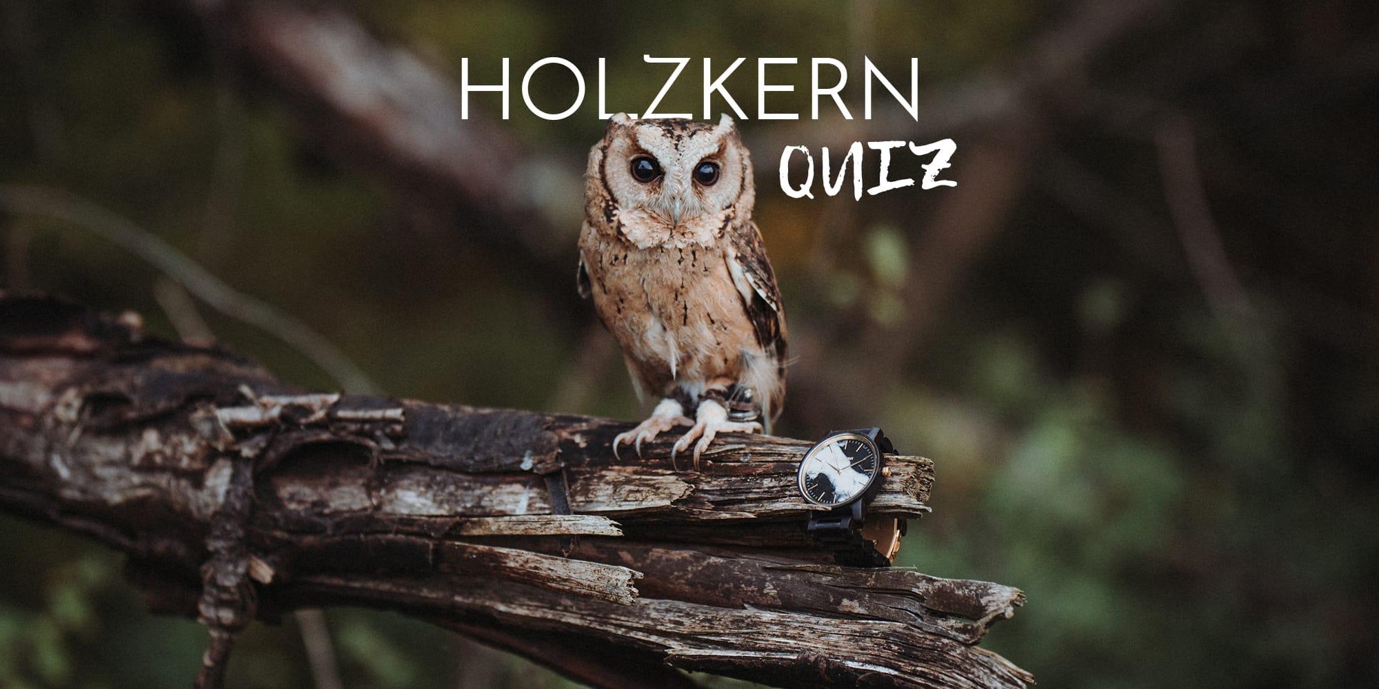 Le grand quiz de la chouette Holzkern