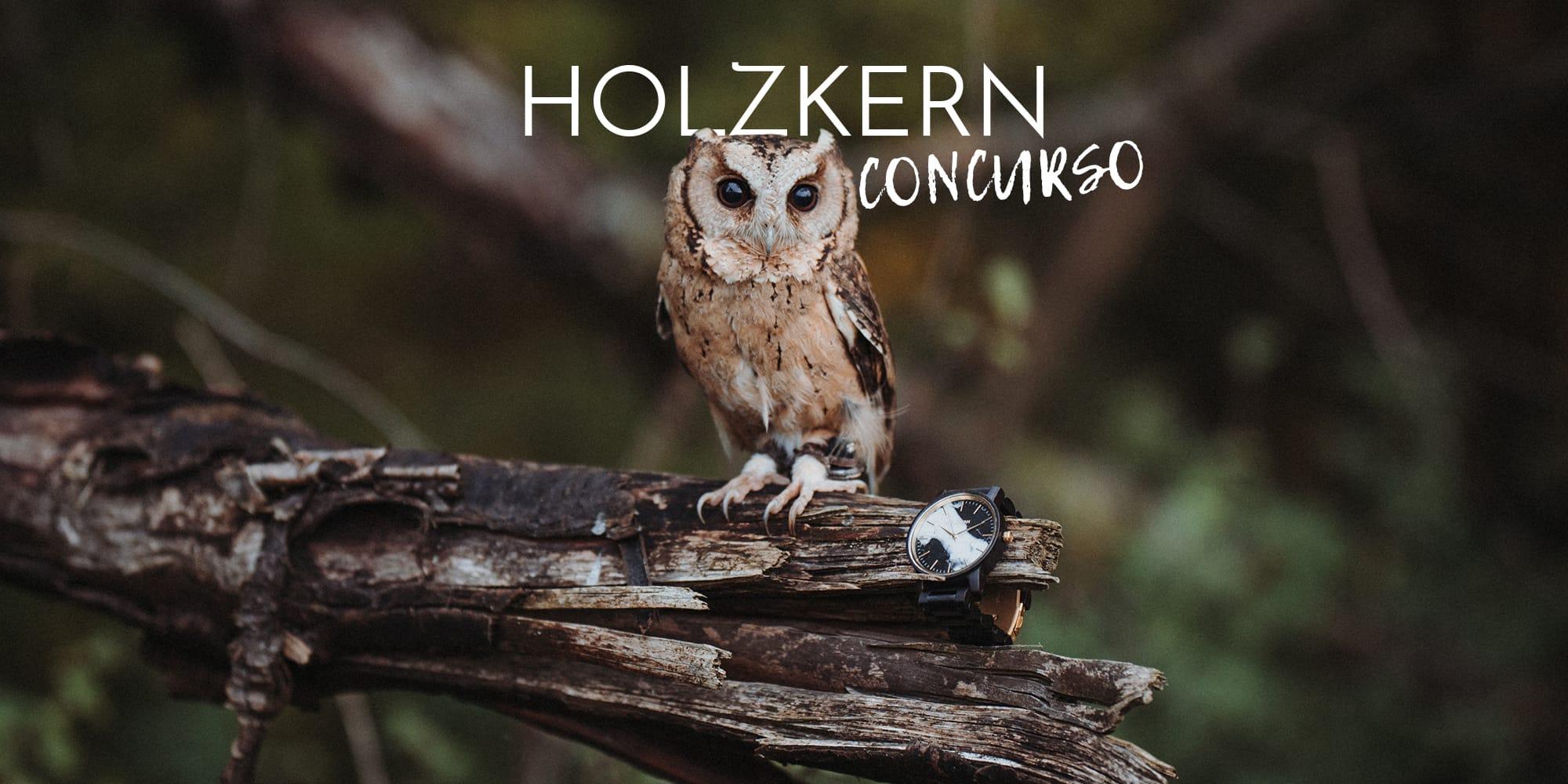 El gran concurso del búho de Holzkern