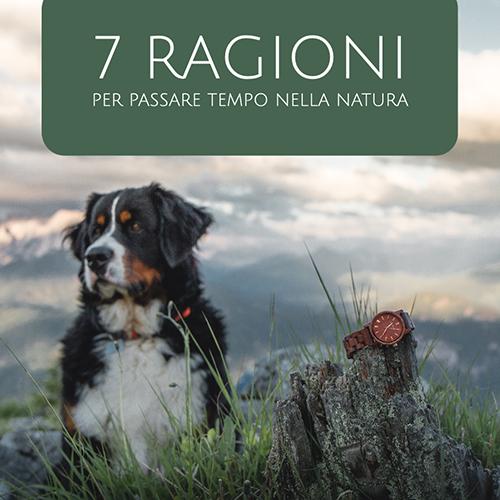 7 motivi per cui si dovrebbe trascorrere più tempo in natura