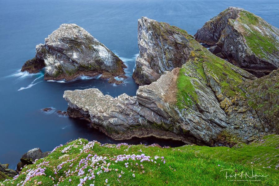 Unterwegs auf den Shetland Inseln