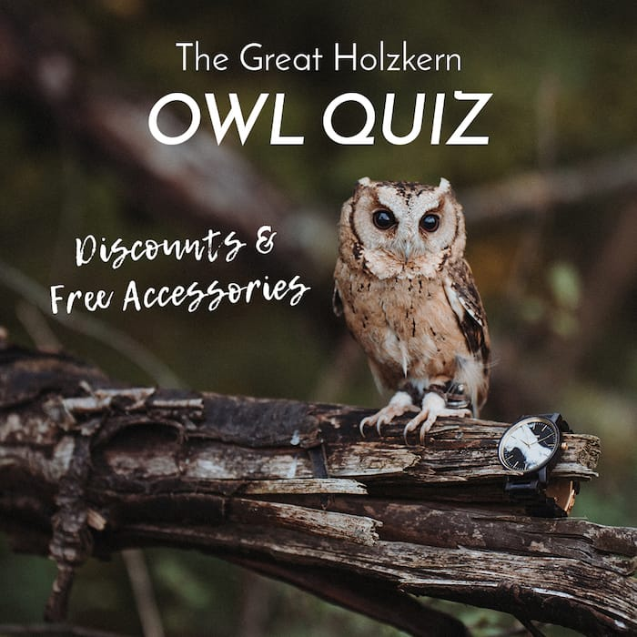 The great Holzkern owl quiz!