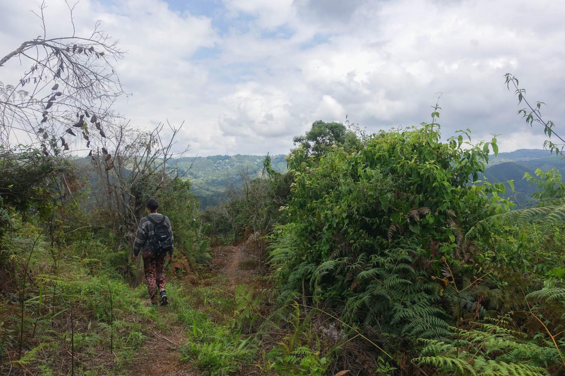 Fare escursioni in Colombia