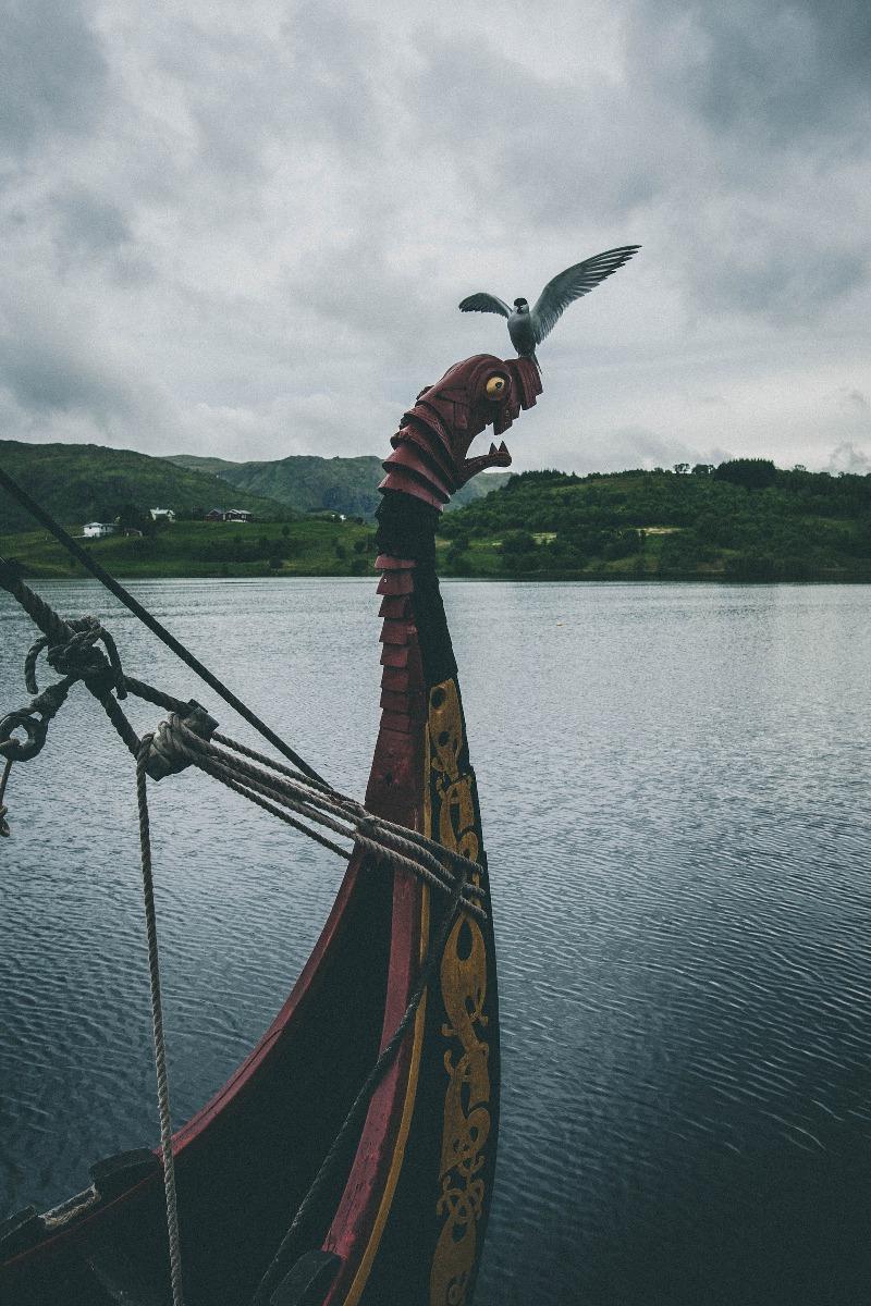 Wikingerschiff Vogel